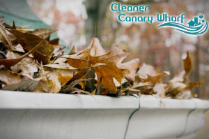 gutter-cleaners-canary-wharf